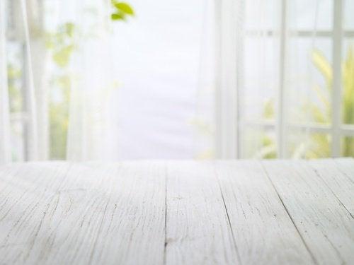 sitruunapuu kasvaa myös kotona