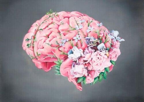 Kiltteyden toteuttaminen hoitaa aivoja