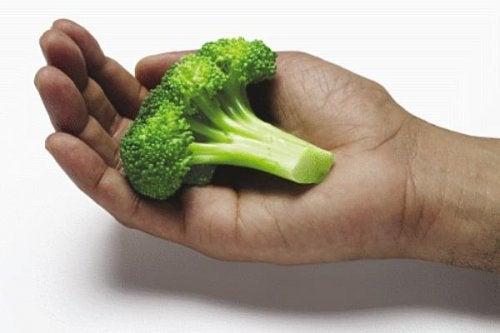 ruoka-annosten mittaaminen kämmenellä