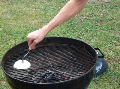 koita tätä käyttötapaa sipulille: grillin puhdistus