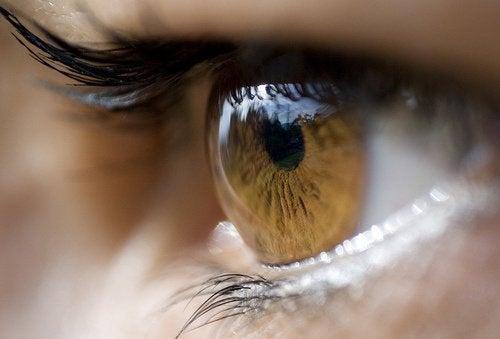 silma