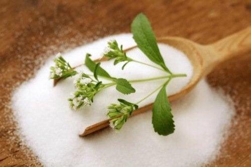 Steviaa voi käyttää makeuttajana sokerin tai hunajan sijasta.