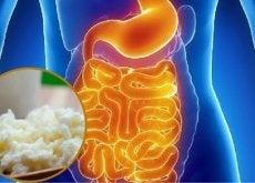 Suoliston bakteeritasapaino