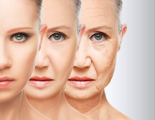 ikääntyessä kollageenin muodostuminen alkaa vähentyä