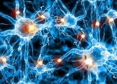 Alzheimer ja aivot