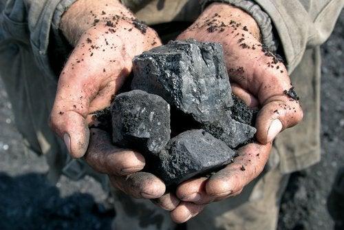 7 mielenkiintoista tapaa käyttää hiiltä kotona