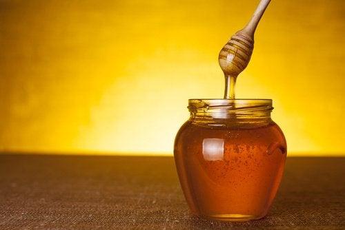 Parempaa unta hunajaa nauttimalla