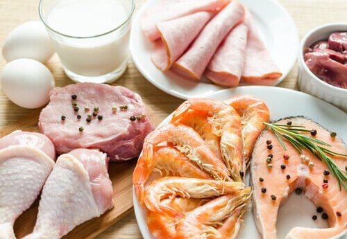 kiinteytä käsivarret ja reidet syömällä proteiinia