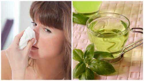 Poista nenän tukkoisuus viidellä luonnollisella hoidolla