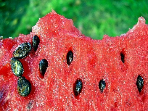 Vesimelonin siementen terveyshyödyt