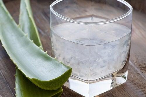 Aloe vera- mehua voi valmistaa myös itse.