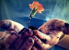 kukka ja multa kädessä