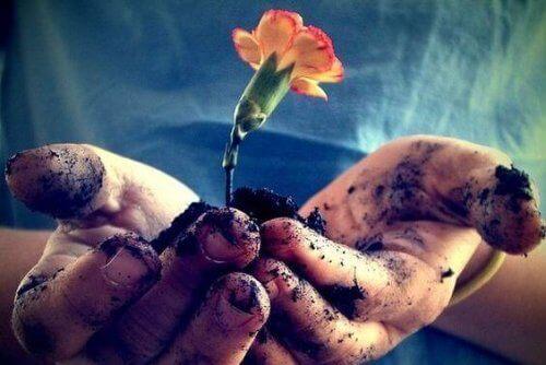 Rakkautta täytyy ravita joka päivä, jotta se kukoistaa