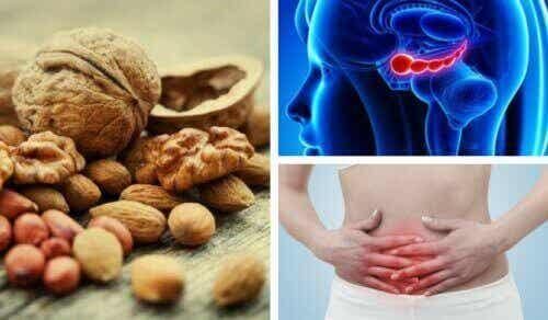 7 saksanpähkinöiden loistavaa terveyshyötyä