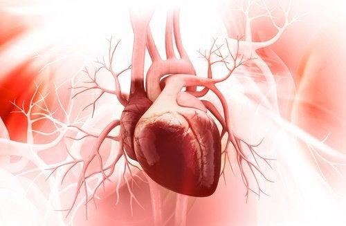 Omenoiden viisi terveyshyötyä - edistää sydämen terveyttä.