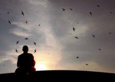 munkki ja hiljaisuus