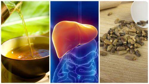 6 vaihtoehtohoitoa rasvamaksan hoitoon