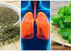 keuhkojen puhdistus yrttien avulla
