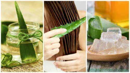 5 hoitoa aloe verasta vahvistamaan hiuksiasi