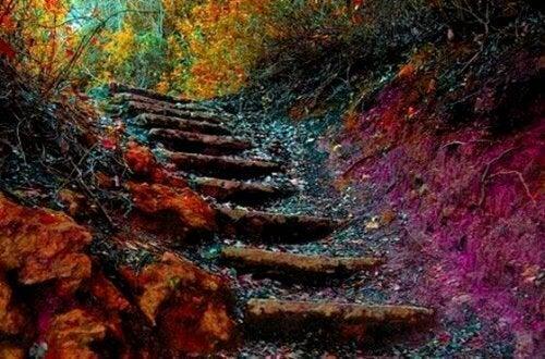 """""""Elämän portaat"""" – näin voit parantaa itseäsi 5 tavalla päivittäin"""