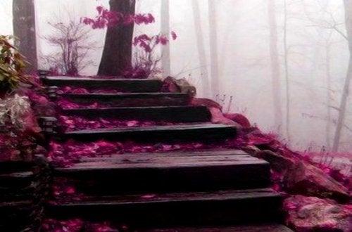 elämän portaat