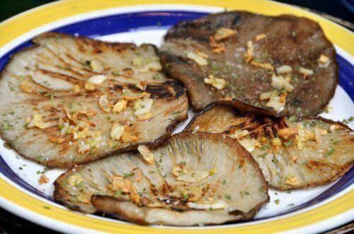 Vahvista vastustuskykyäsi osterivinokkailla