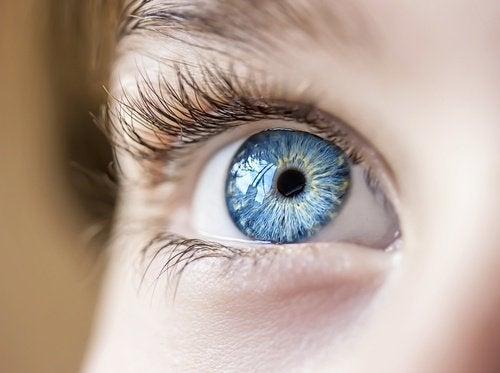 silmä