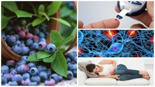 Mustikoiden 8 mahtavaa terveyshyötyä