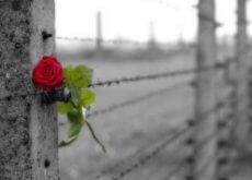 rakkauden ja pakkomielteen ero on piikkilanka-aita