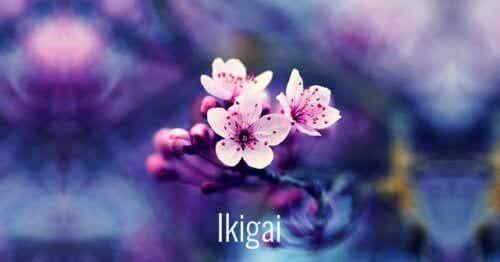 7 kaunista japanilaista sanaa, jotka ovat avuksi henkilökohtaisessa kasvussa
