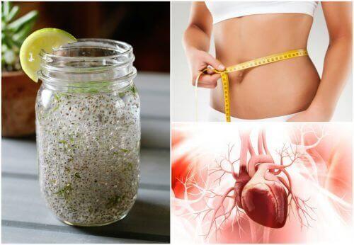 Chia-siemenistä ja sitruunamehusta valmistetun juoman terveysvaikutukset