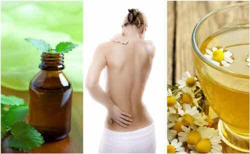 7 luonnollista lihasrelaksanttia lihasten jäykkyyteen