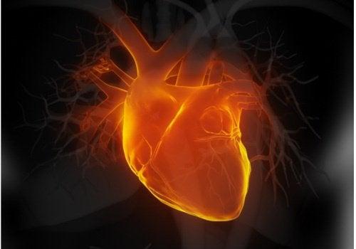 Varo näitä 6 varhaista sydämen vajaatoiminnan merkkiä