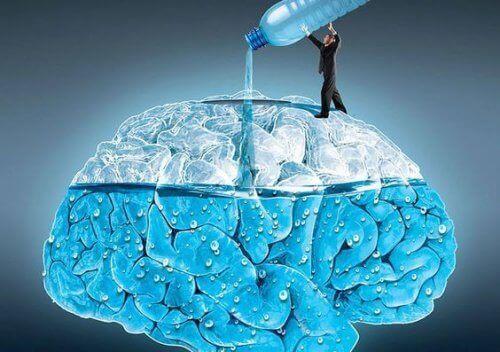5 mahtavaa tapaa joilla vedenjuonti vaikuttaa aivoihin