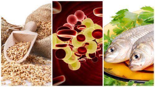 7 kolesterolia kontrolloivaa ruokaa