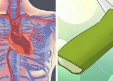aloe vera auttaa pitämään huolta sydämestä