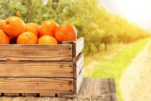appelsiinikori