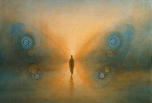 perhosen siivet ja ihminen