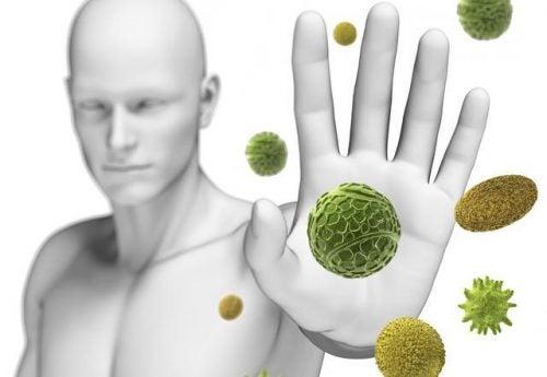 torju bakteereja
