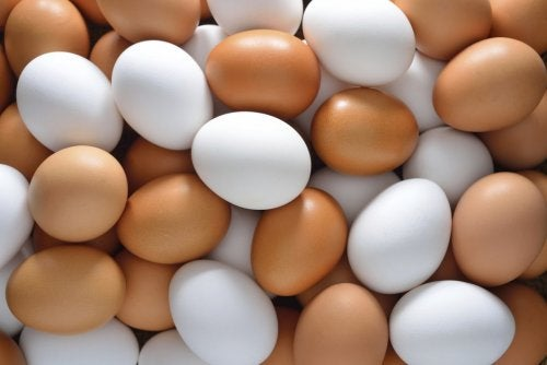 kananmunista tehdään proteiinipitoista hiusnaamiota