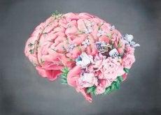 aivoissa kasvaa kukkia: eivät ole surulliset aivot