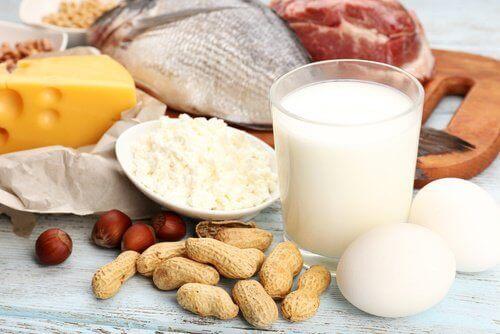 proteiinipitoiset ruoat hoikistaa reisiä