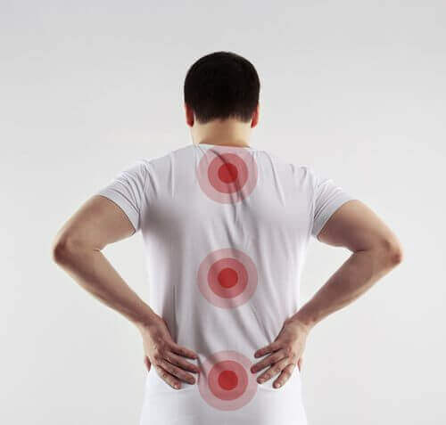 Tutkimuksen löydökset voisivat auttaa selkärangan vammoista kärsiviä potilaita.