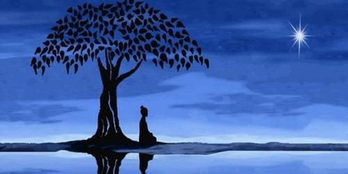 Vipassana- meditaatio auttaa sinua näkemään asiat niinkuin ne ovat, tulkitsematta niitä liikaa.