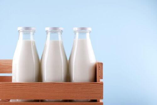 Maitotuotteiden nauttimisen jälkeen saattaa helposti väsyttää,