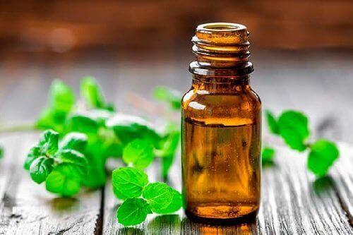 Minttuöljyä käytetään mm. päänsärkyjen hoidossa.
