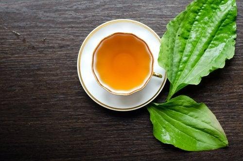 rasvaa polttavaa teetä