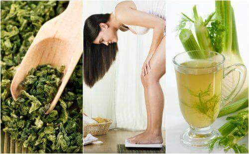 Pudota painoa helposti 5 lääkinnällisen kasvin avulla