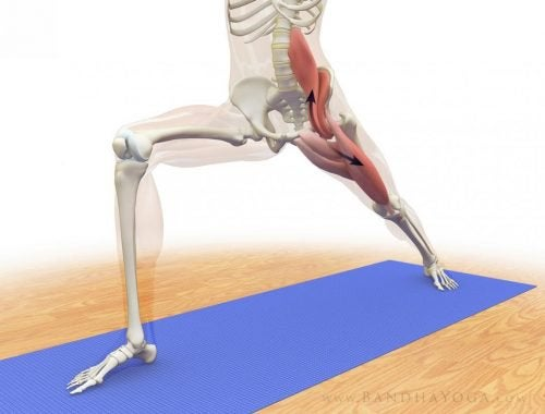 Venytys poistaa kireyttä sielun lihaksesta.