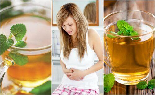 5 parasta teetä rauhoittamaan ärtyvän suolen oireyhtymää